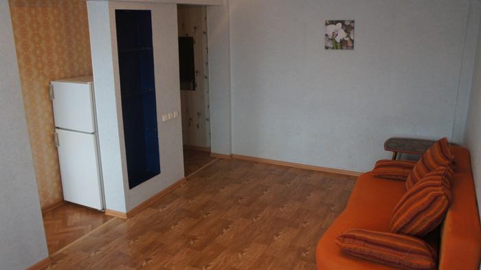 диван, холодильник, вид на вход в квартиру