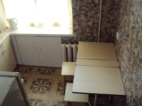 кухня квартиры посуточно в Красноярске на Ленина 102