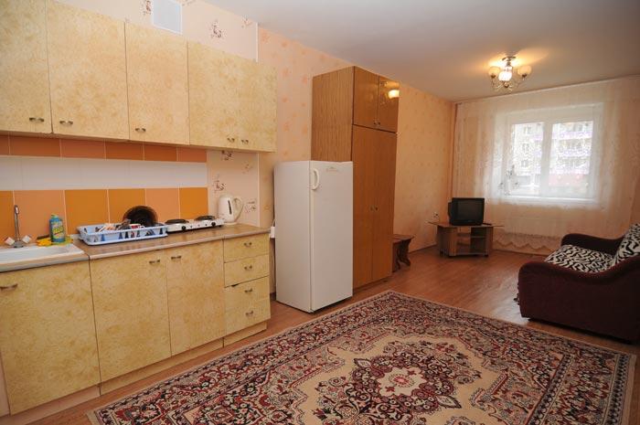 1-комн квартира посуточно Светлогорский в Советском районе в Красноярске