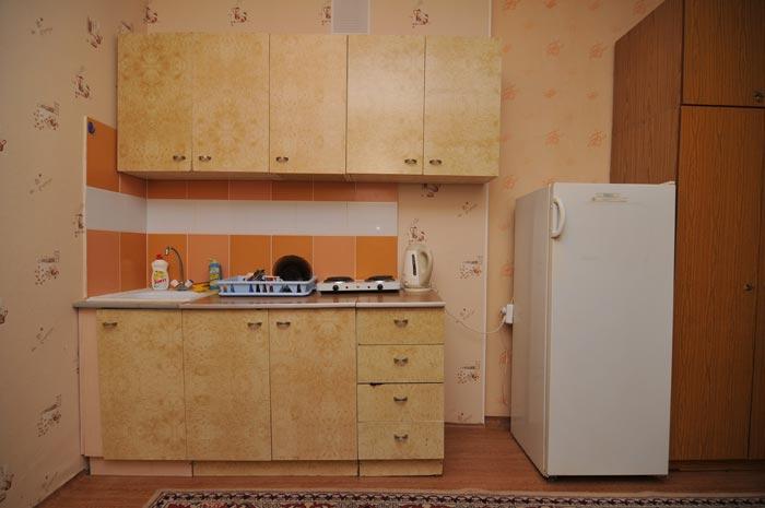 кухня квартиры посуточно переулок Светлогорский в Красноярске